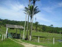 Sítio - Venda - RURAL, Silva Jardim - RJ