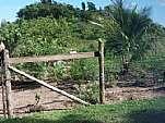 Terreno - Venda: Lagoa Verde, Rio Bonito - RJ